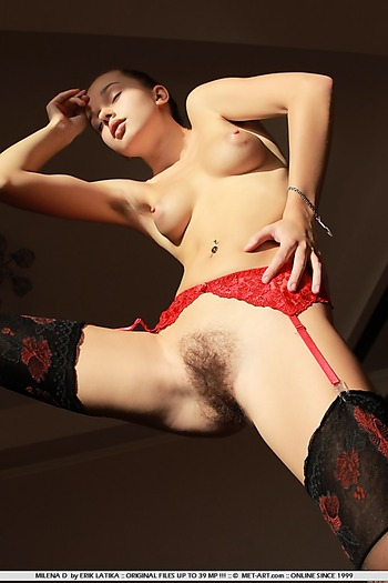 Teen in stockings reveals hairy pussy indoors